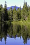 Mountain and forrest reflection in clear lake stock photo