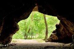Mountain forrest,  view out from the cave.  Sandstone dome Stock Photos
