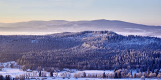 Mountain forrest at winter time stock photos