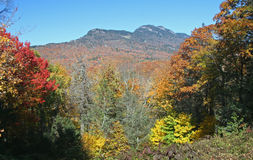Mountain Framed by Autumn Colors Royalty Free Stock Photos