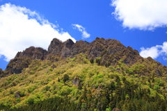 Mountain with fresh green Royalty Free Stock Image