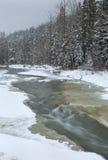 Mountain Fresh Winter Stream Royalty Free Stock Photo
