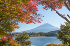 Mountain Fuji Royalty Free Stock Photo