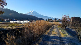 Mountain Fuji with beautiful scenery. Stock Photography