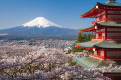 Mountain Fuji and Chureito red pagoda with cherry blossom sakura Royalty Free Stock Image