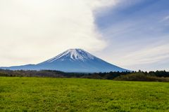 Mountain fuji in forest, Japan. Mountain fuji with scenic forest foreground in in Fujikawaguchiko, Yamanashi, Japan. Natural landscape with copy space for text royalty free stock photo