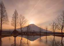 Mountain fuji. In the morning at Fumotopara camping ground, Fujinomiya , Shizuoka prefecture Stock Photo
