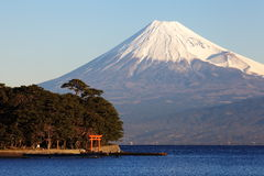Mountain Fuji and sea Stock Images