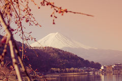 Mountain Fuji view from the lake,The symbol of Japan. Royalty Free Stock Image