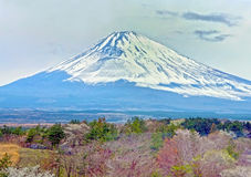 Mountain Fuji in winter close up, natural landscape Royalty Free Stock Photo