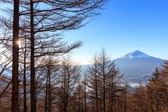 Mountain Fuji in winter stock images