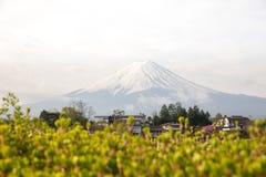 Mountain Fuji Royalty Free Stock Photo