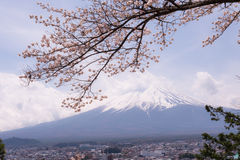 Mountain Fujiyama, a remarkable land mark of Japan in a cloudy day with cherry blossom or Sakura in the frame. The picture of Spri Royalty Free Stock Photography