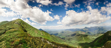 Mountain gentle slopes with grass herbs Royalty Free Stock Image