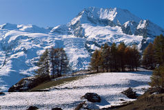 Mountain and Glacier of Mont Pourri Royalty Free Stock Photos