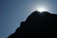 Mountain goat silhouette Royalty Free Stock Photo