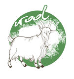 Mountain goat wool Royalty Free Stock Images