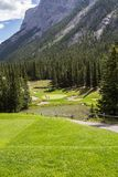 Mountain Golf Course in Banff. National Park. Evergreen trees and putting green royalty free stock photography