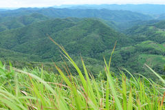 Mountain and grass foreground Stock Photography