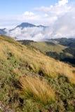 Mountain and grass land. Royalty Free Stock Photos