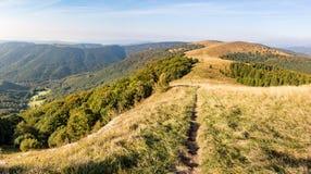 Mountain grassy ridge under blue sky in fall season Royalty Free Stock Photography