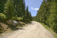 Mountain gravel road Stock Photography