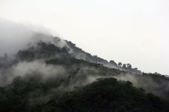 Mountain. The green mountain with cloud Royalty Free Stock Photography