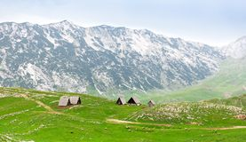 Mountain and green landscape of Montenegro Stock Image