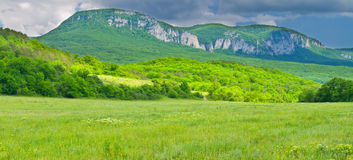 Mountain and green meadow Royalty Free Stock Images