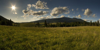 Mountain green meadow with sun. Royalty Free Stock Image