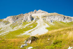 Mountain and green meadow Stock Images