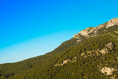 Mountain with green trees against the blue clear sky, Tarragona, Catalunya, Spain. Copy space for text. Stock Photo