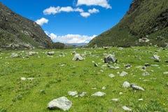 Mountain green valley Royalty Free Stock Photos