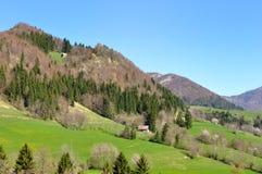 Mountain greenery landscape Stock Photography