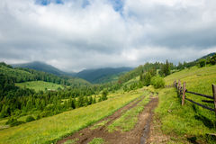 Mountain ground road Stock Images