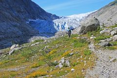 A mountain guide hiking to Fabergstolsbreen, a glacier arm of the large Jostedalsbreen glacier, Norway, Europe. A mountain guide hiking to Fabergstolsbreen, a royalty free stock image