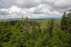 Mountain Harz,Germany Royalty Free Stock Photography