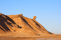 Mountain Head of Camel in Sahara desert Royalty Free Stock Image