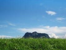 Mountain heuberg and meadow Royalty Free Stock Photo