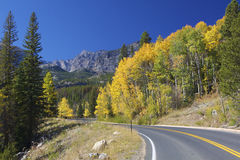 Mountain Highway in Fall. A highway winds through beautiful colorado rocky mountains in autumn Royalty Free Stock Image