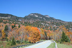 Mountain Highway Framed in Autumn Colors Stock Images