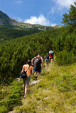 Mountain hikers Royalty Free Stock Image