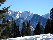 Mountain Hiking. High altitude in the Colorado Rocky Mountains during Winter royalty free stock photos