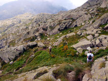 Mountain hiking path of stones and rocks, the Brenta Dolomites Royalty Free Stock Photo