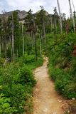 Mountain hiking trail Royalty Free Stock Images