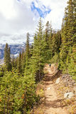 Mountain hiking trail Stock Images