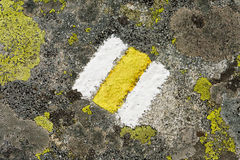 Mountain hiking trail mark on rock with moss. Texture closeup of yellow mountain hiking sign aged with cracks, painted on rock covered with different species of Stock Photo