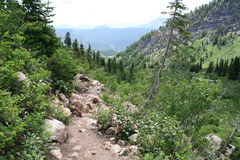 Mountain Hiking Trail. Hiking trail in the mountains above American Fork Canyon, Utah Stock Photo