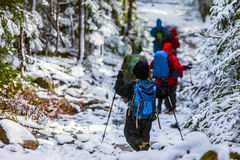 Mountain hiking. Winter storm group Royalty Free Stock Images