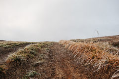 Mountain hill road up with frost grass Royalty Free Stock Photography